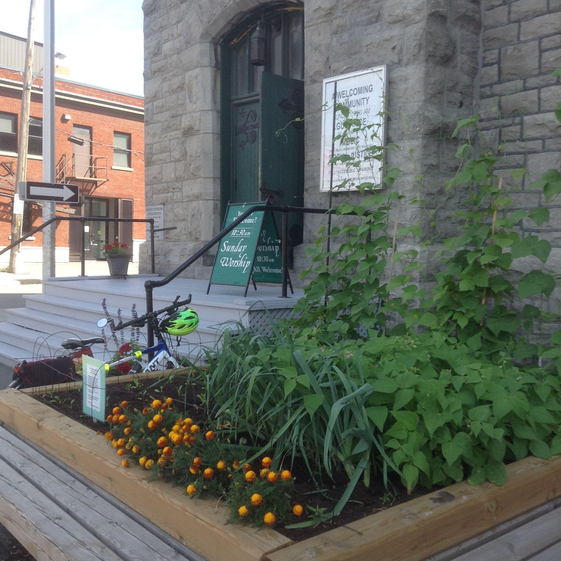 Garden - A Thriving Garden 3